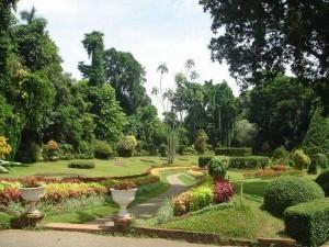 Botanical_Garden_Kandy-300x225