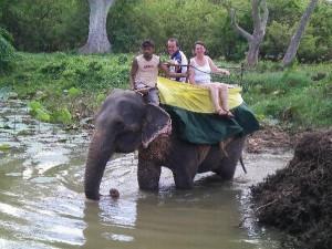Elephant_Riding-300x225